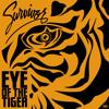 Download Survivor - Eye Of The Tiger (Dave M Club Mix) - Prew Mp3