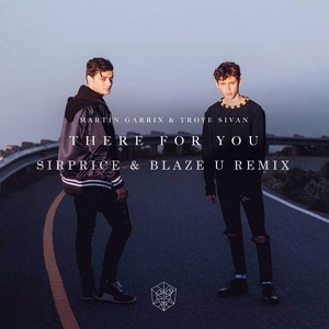 Download lagu Download Martin Garrix There For You (6.78 MB) MP3