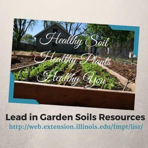 Lead in Garden Soils Interview