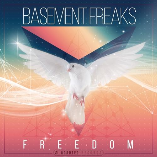 Basement Freaks - Gotta Feel Good
