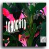 10hoch10 (Prod. SZR)