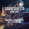 David Guetta - Play Hard (Donhowe & Joshua Raxx 2K17 Festival Mix)