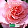 Real Love TM =====> free Download