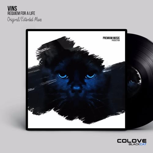 VinS - Requiem for a Life (EP)