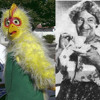 Two Shorts - Mrs. Obbs (1940) and Chickenman (1960)