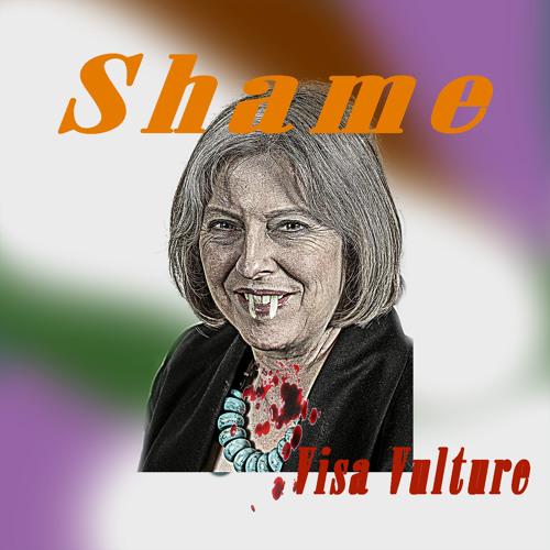 Shame - Visa Vulture