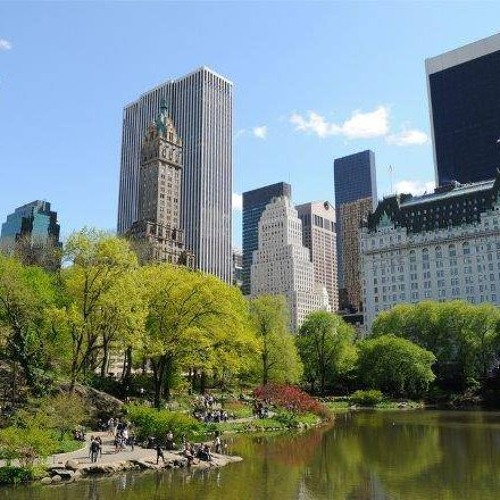 Episode 783 - Hot Summer Trees May Cause More City Smog