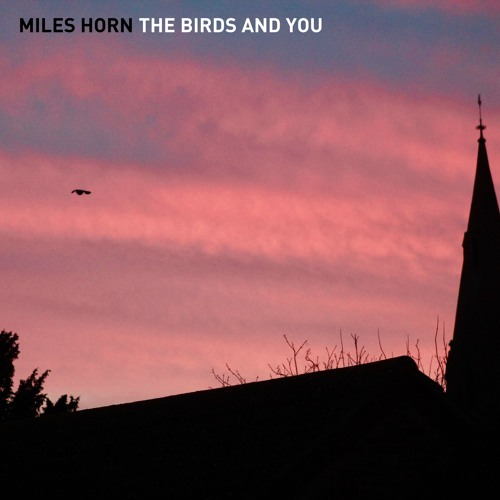 The Birds And You