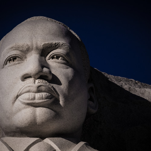 """""""Why Don't You Be Like MLK?"""" (29)"""