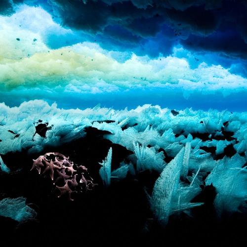 Saving the Last Ocean