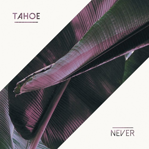 Never (EP)