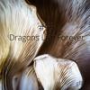 #56 Dragons Live Forever