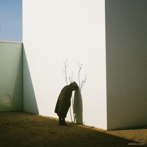 ANIMAL HACK - Moment (SEKITOVA Remix)