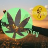 Marky Dudley Ft Eddy Ducreo - Despacito Mashup (Jeydee Club X SIREN JAMSESH Remix)