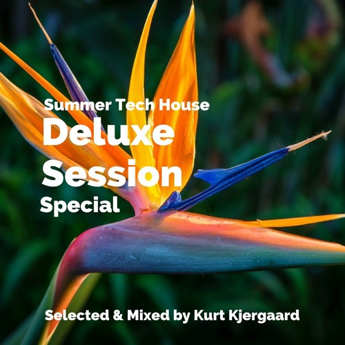 Deluxe Session Special  Summer Tech House Mix by Kurt Kjergaard