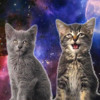 Space Cats - Magic Fly [FREE DOWNLOAD]
