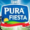 Pura Fiesta Mix 2017 ( Discoteca )