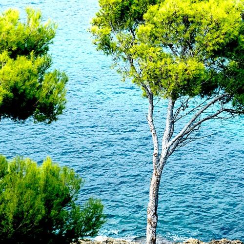 September in Camp de Mar