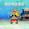 wicky wicky wild wild west