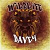 Davey - Intro (WildLife)
