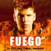Alok vs Mallover - FUEGO (Dj Feeling Tribal Mashup)