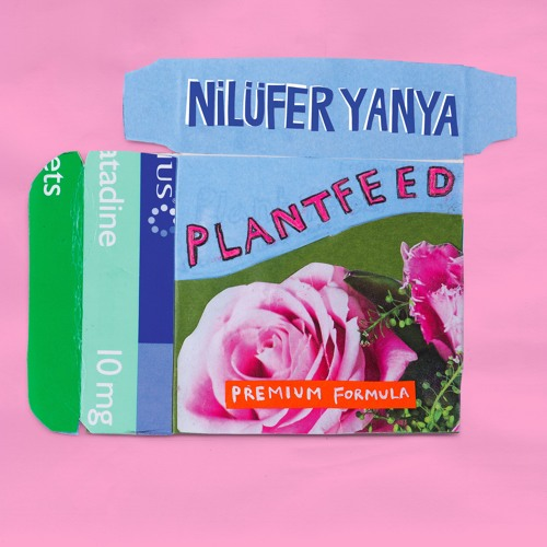 Plant Feed EP