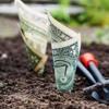 Workey and Clustree Get Paid | TaskRabbit Grows | Kalo | Olivia & Mya Get Competition | Recruitics