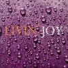 Livin Joy - Dreamer (Craig Knight Remix)