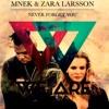 MNEK & Zara Larsson - Never Forget You (Dash Berlin Remix)