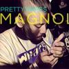 Playboi Carti - Magnolia - Remix