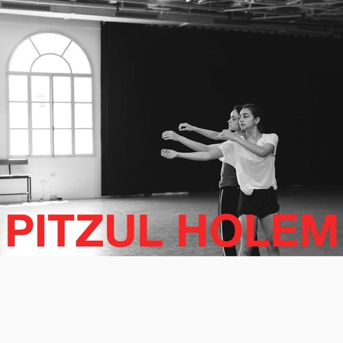 'Pitzul Holem' - Composition for contemporary dance, performed by 'Bat Sheva' dance company