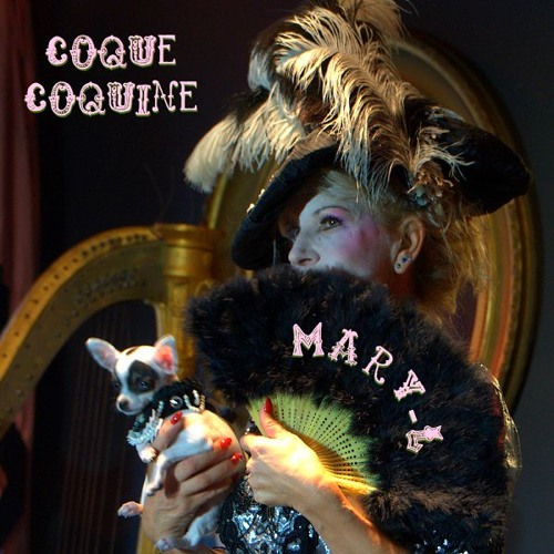 Coque coquine (2016)