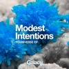 Modest Intentions - Broken Element
