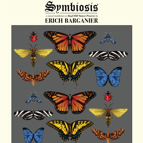 Symbiosis Excerpt 2