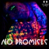 Cheat Codes ft. Demi Lovato - No Promises (Xavier Remix)