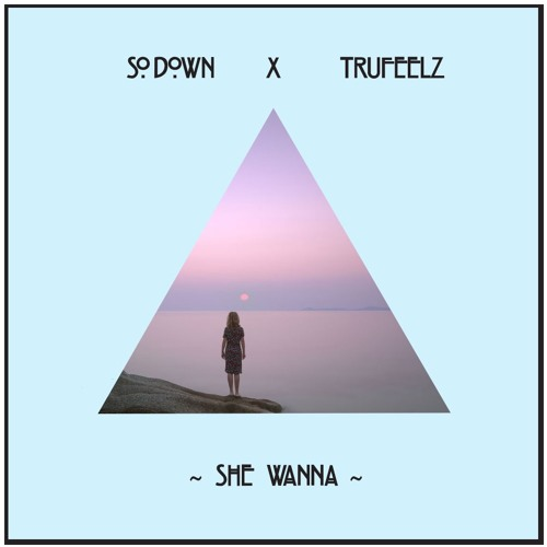 She Wanna (Feat. TruFeelz)