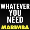 Whatever You Need Marimba Ringtone Meek Mill Feat Chris Brown And Ty Dolla Sign Mp3