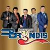 Grupo Bryndis  La Gata Bajo la Lluvia  ESTRENO 2017-[Mp3 Music Downloader].mp3
