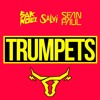 Sak Noel, Salvi Ft Sean Paul - Trumpets!(Uncontrolled Private Rmx 2k17)***FREE DOWNLOAD***