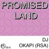 PL#6 DJ Okapi (RSA) mp3