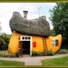 Clog House Party - Golden Boy