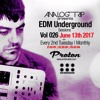 Analog Trip @  EDM Underground Sessions Vol026 Protonradio 13 - 6-2017 | Free Download