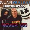 Alan Walker & Marshmello ft Arc North - Never Go