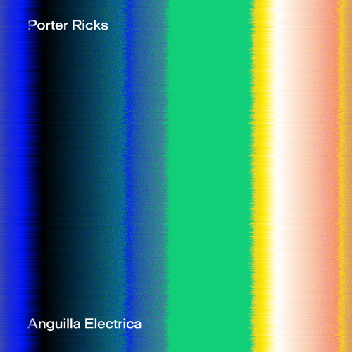 "Porter Ricks ""Anguilla Electrica"" [First Floor Premiere]"