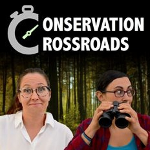 CC E#00 Conservation Crossroads Trailer