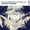 The Thrillseekers With Katherine Amy - I Gotta Let You Know (Extended Mix)