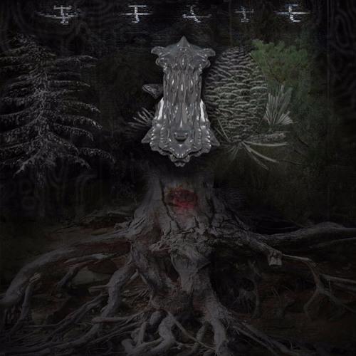 Aerial Kingdom (Swan Meat Godless Remix)