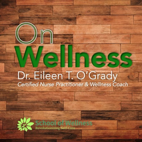 On Wellness Episode #3: Sheri Denkensohn-Trott, Expert on Resilence