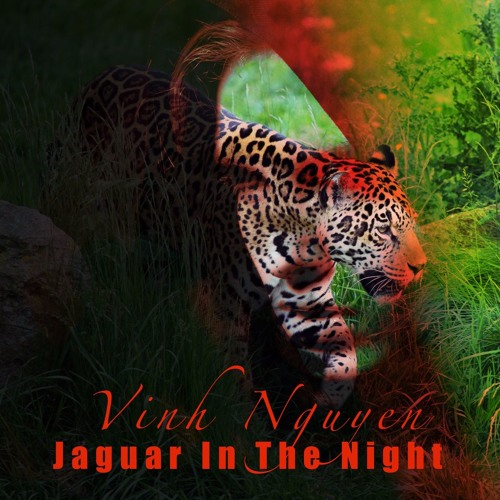 Jaguar In The Night