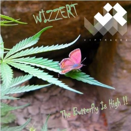 Wizzert - The butterfly is high